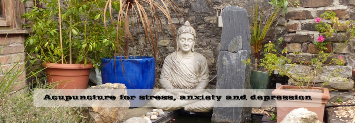 Acupuncture for anxiety, stress, panic attacks and depression. Malou Acupuncture Dublin 2